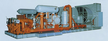 picture : Reciprocating Gas Compressor